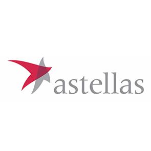 לוגו אסטלס